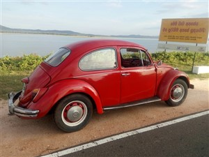 volkswagen-1300-1968-cars-for-sale-in-colombo