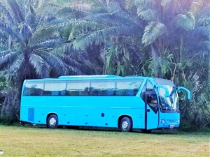 tata-globus-2010-buses-for-sale-in-gampaha