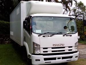 isuzu-2012--elf-forward-freezer-truck-manual-2012-trucks-for-sale-in-gampaha