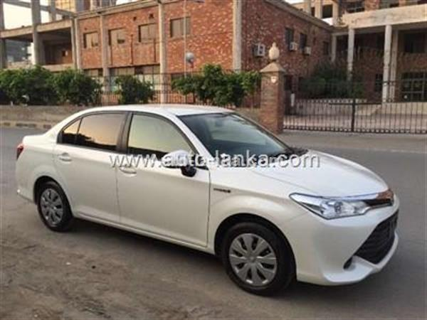 AXIO HYBRIDE NEW CAR FOR RENT